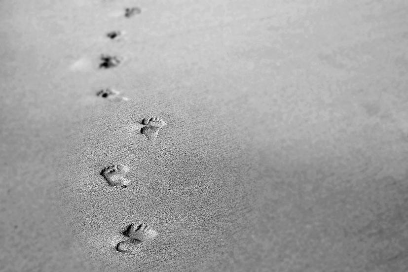 Pegadas na Areia: todos os Mestres conduzem a Mikao Usui | Foto: Dominik R Photography/Creative Commons